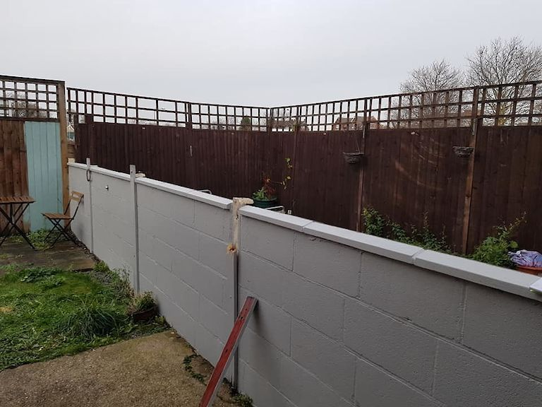 Custom Trellis Build Beeston